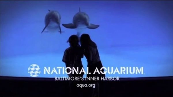 National Aquarium Television Commercials